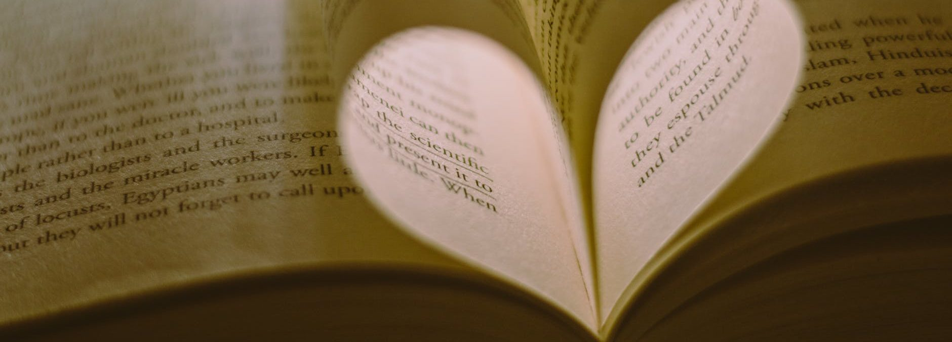 close up photo of book pages